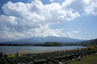 Mt. Fuji and Lake Kawaguchiko Photo by Jerome Lee
