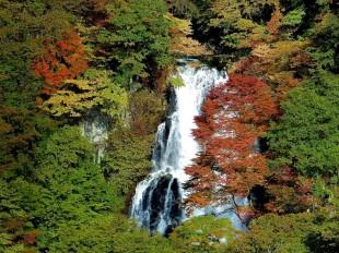 Upper Kirifuri-no-taki Falls, Nikko