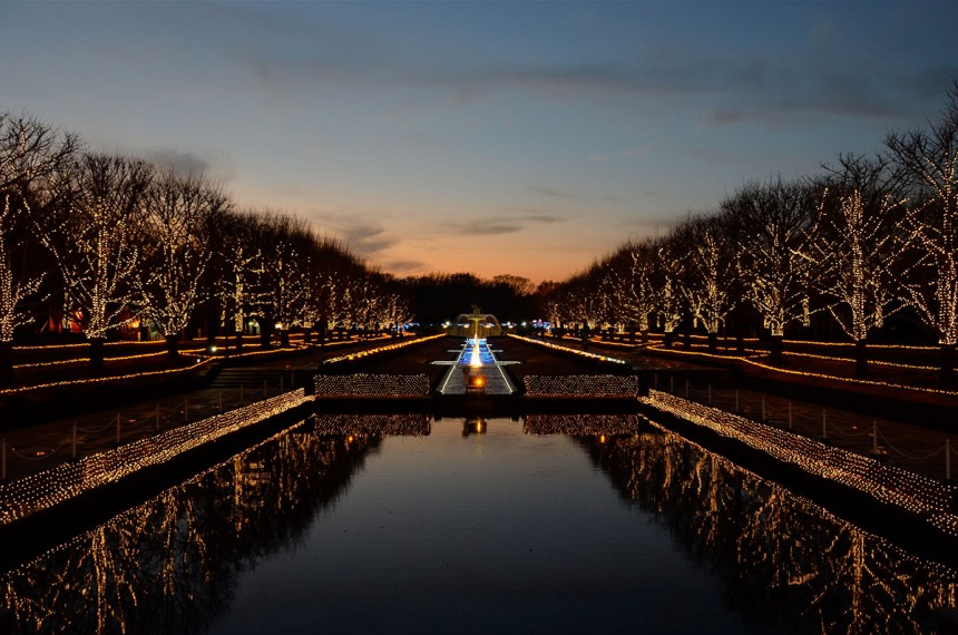 Showa Memorial Park Illumination
