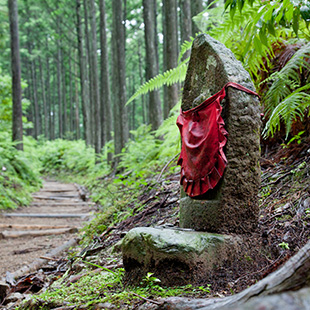Traveling the Kumano routes