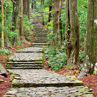 Kumano Kodo at Daimon-zaka, a sacred trail