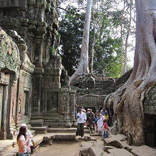 Exploring Khmer
