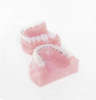 Smile Care Orthodontics Shibuya