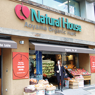 Natural House in Aoyama