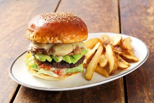 1097-burger-sp-arms