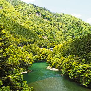 The Okutama area