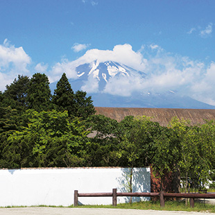 A view of Fuji from Virtus