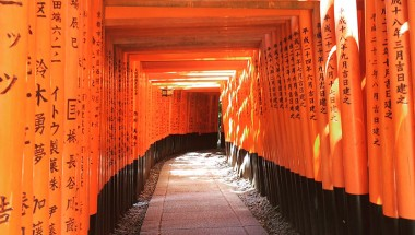 10,000 Gates in Kyoto