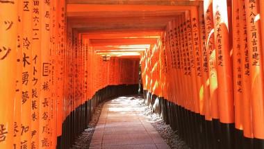 10,000 Gates in Kyoto