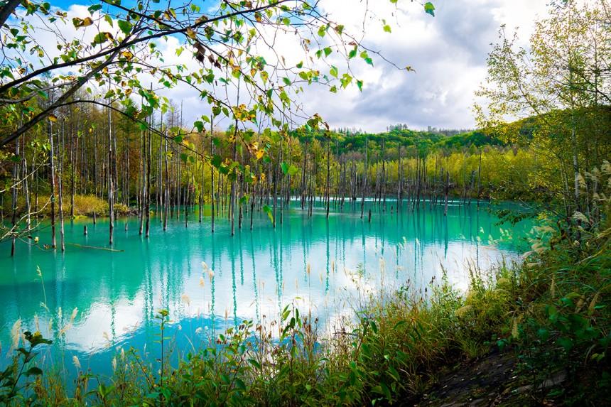 The Blue Pond in Hokkaido