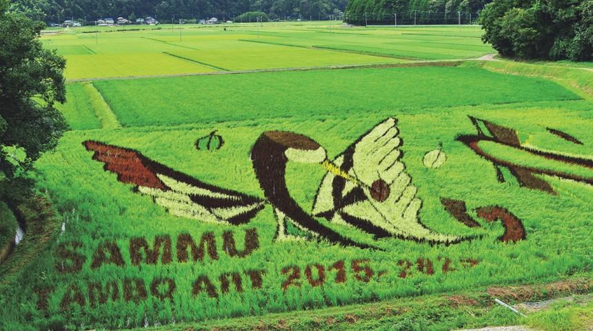 Sammu Tambo Art Project