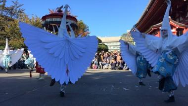 The White Heron Dance