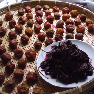 Umeboshi (photo by Joan Bailey)