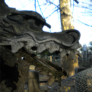 Suwa shrine (photo by Joan Bailey)