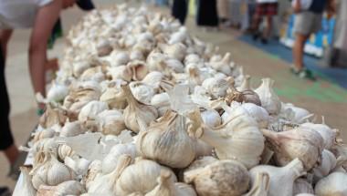Tokyo Garlic Festival
