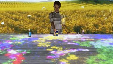 teamLab x L'Occitane: Digital Provence