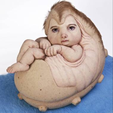 Patricia Piccinini The Rookie 2015 Fiberglass, silicone, hair 48 x 65 x 46 cm  Public Relations, Mori Art Museum, Tokyo August 2016 Collection of the artist Courtesy: Tolarno Galleries, Melbourne; Roslyn Oxley9 Gallery, Sydney; Hosfelt Gallery, San Francisco