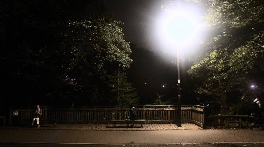 Parks and Trepidation