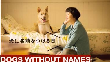 Japanese movie screening with English subtitles