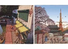 Illustrations by  Shinji Tsuchimochi, provided by Shikaku Publishing.