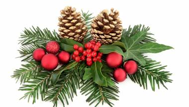 Christmas Festival and Carols