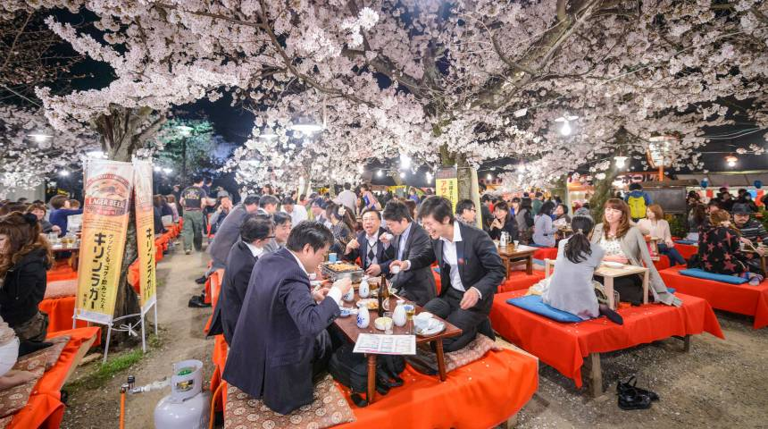 A Look Inside Japan's Springtime
