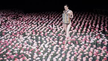 Pina bausch: Nelken (carnations)