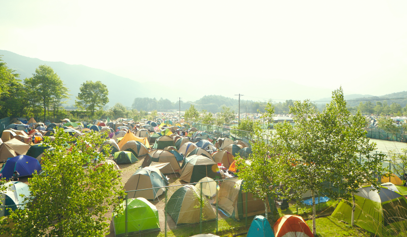 Camp Out, Fest Out