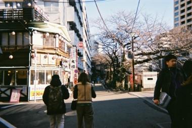Meguro river 1