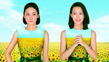 Desperate Sunflowers