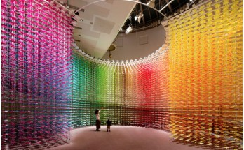 IMBARI Color Show