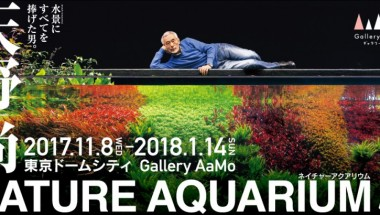 Takashi Amano NATURE AQUARIUM Exhibition