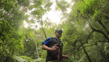 Amami Jungle Trail Run in Kagoshima (50KM, 20KM)