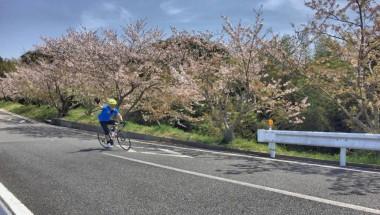 Great Earth Chiba Minami Boso Ride 2018