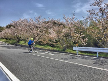Great Earth Chiba