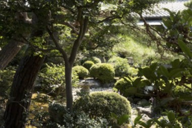 Shiga Prefecture travel guided tour traditional Japanese garden