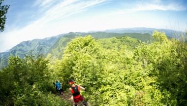 8th Tokyo Nariki Forest Trail Run (25KM)
