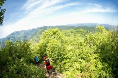 Nariki Forest Run 25km