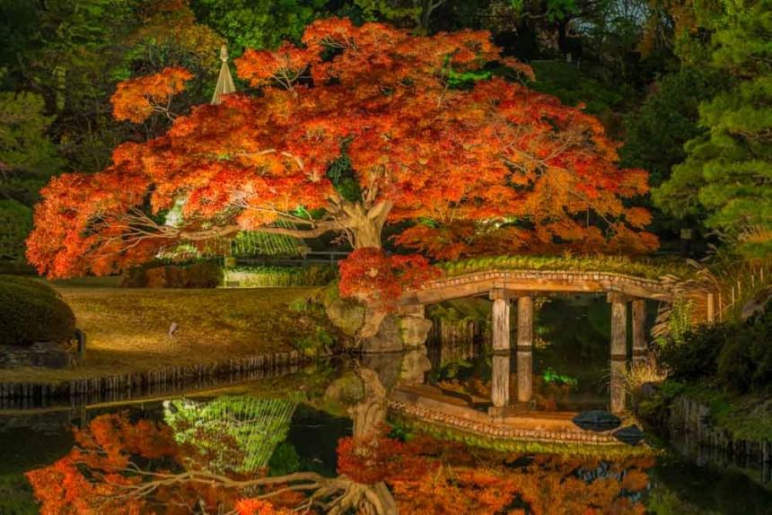Rikugien-Autumn-v01