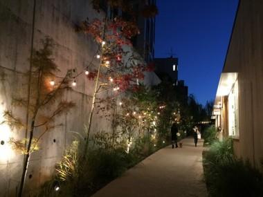 Tokyo High Line Log Road Daikanyama Walking Shops