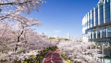 Midtown Blossom 2018