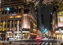 Nihonbashi Sakura Festival 2018 Cherry Blossoms
