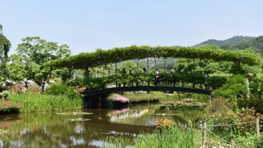 Ashikaga – Flowers and Wine Paradise
