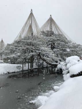 Kenrokuen winter kanagawa garden winter
