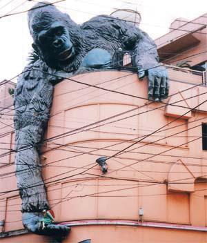 Sangenjaya gorilla