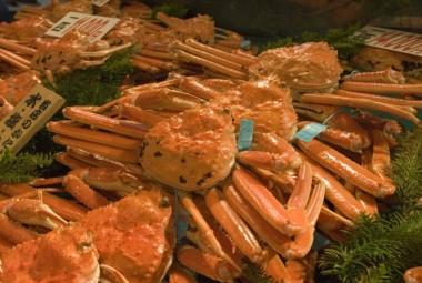 Snow Crab fish market kanazawa fresh
