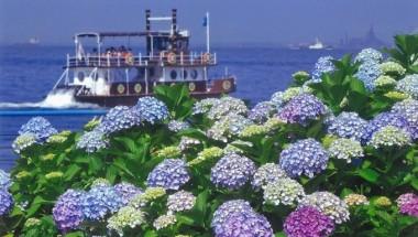 Hakkeijima Hydrangea Festival