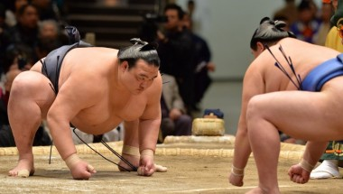 Sumo on Tour (Jungyo Exhibition)