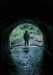 Ghost Stories movie horror Martin Freeman review
