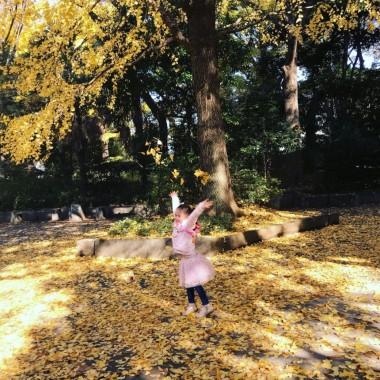 tokyo wonder years seasonal park viewing children tokyo